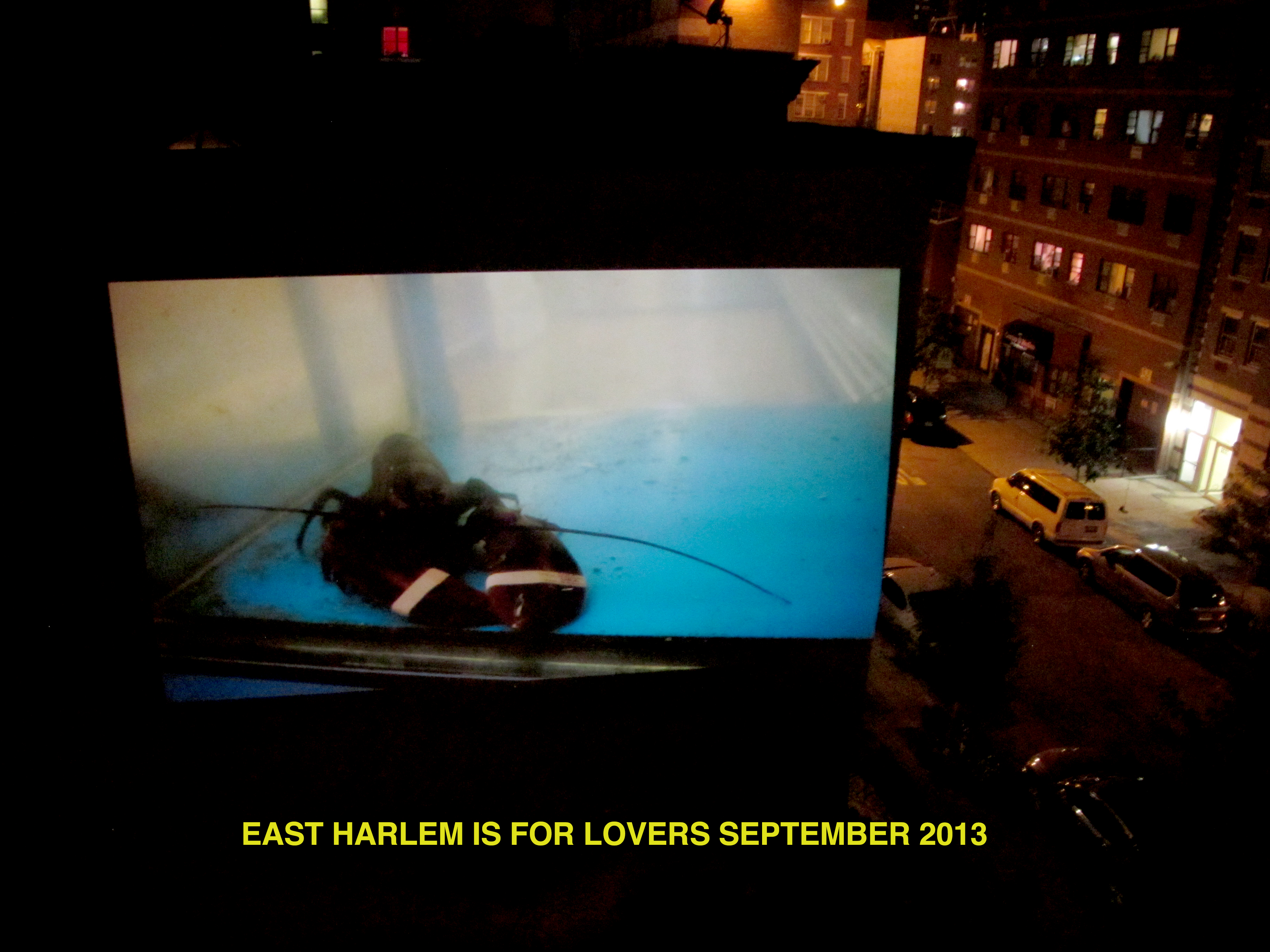 EAST HARLEM IS FOR LOVERS 2013 NYC